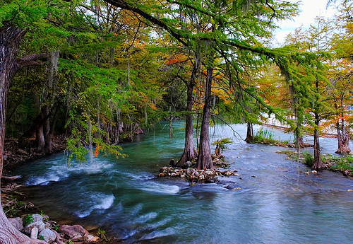The guadalupe river in texas deserves a look camping tourist for Floating the guadalupe river cabins