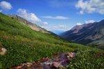 Great Wildflower Hikes