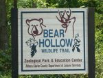 Bear Hollow Trail