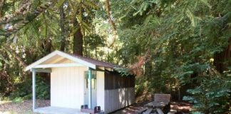 Camping at the Big Basin Redwoods State Park