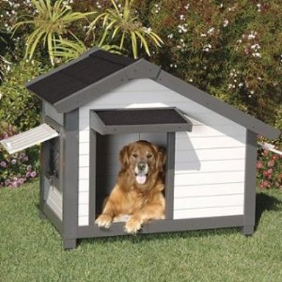 Doggie Homes