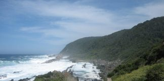 Tsitsikamma - Garden Route National Park