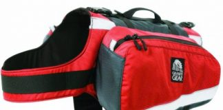 Camping Equipment for Dogs
