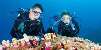 tips of underwater diving