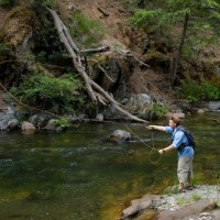 Expert Tips and Suggestions for Fly Fishing Enthusiasts