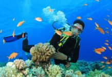 scuba diving vacation