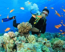 Top Tips to Prepare for your Scuba Diving Vacation
