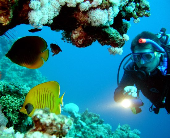 defogging your mask for scuba diving