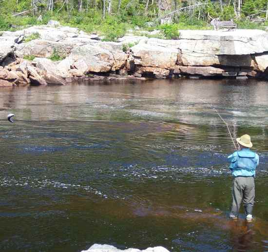 tips for salmon fishing