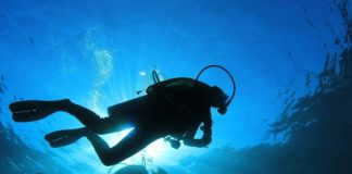 tips for night scuba diving