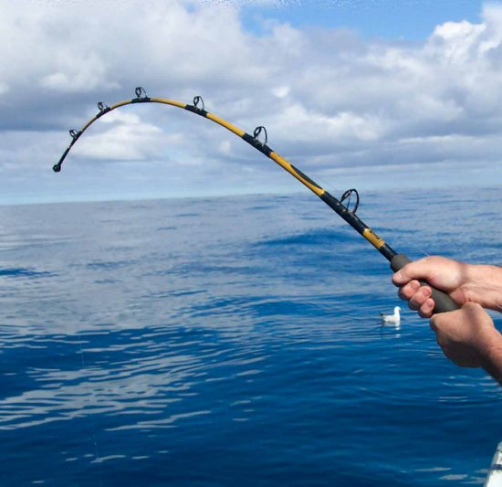 cod fishing tips