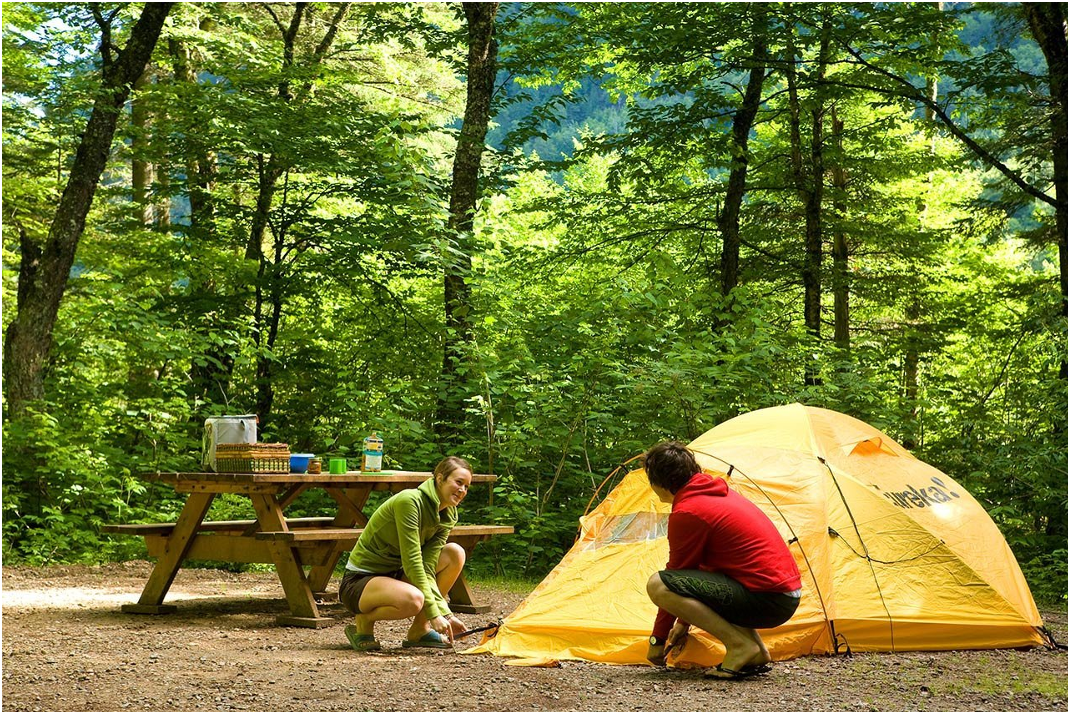 Crazy tips to make camping easier for Fishing campsites near me