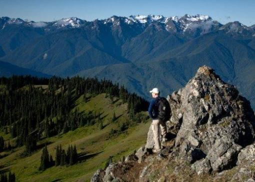 Olympic National Park Will Make Your Hiking Trip A Blast