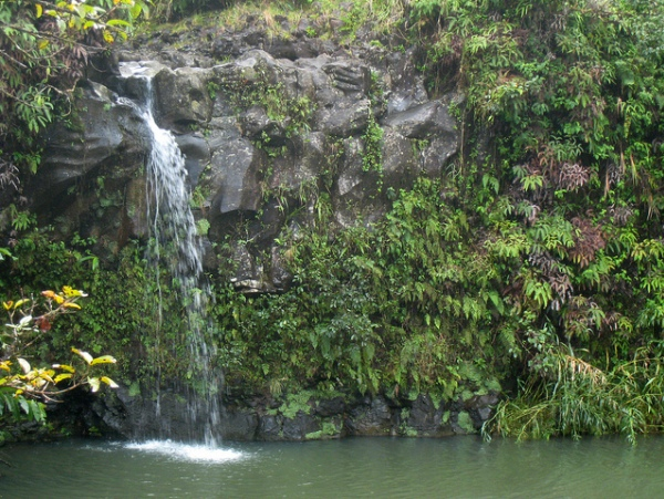 Swimming Holes for Hikers and Campers