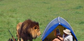 Most Commonly Encountered Dangers of Adventure Camping